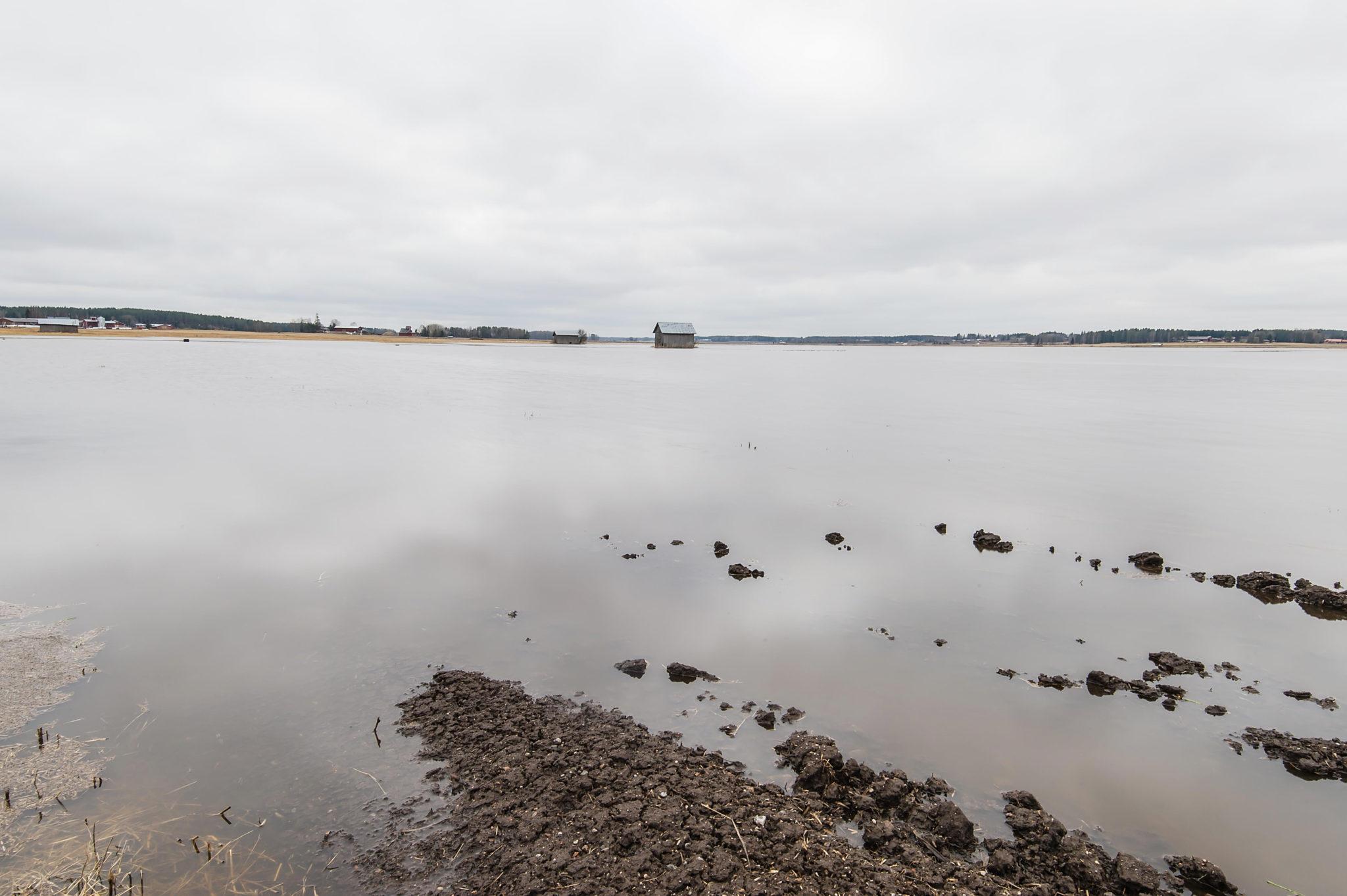 Uusi ranta – New Shore