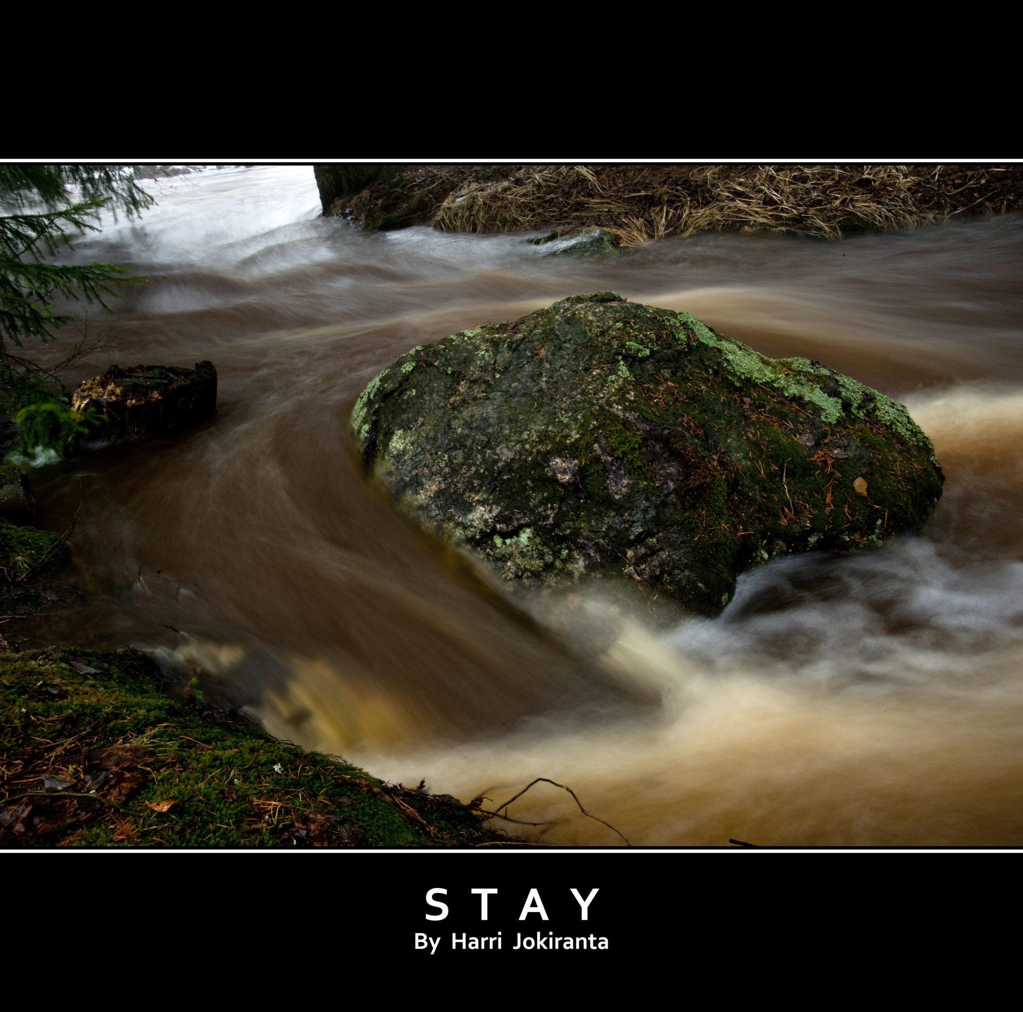 Stay / 2010
