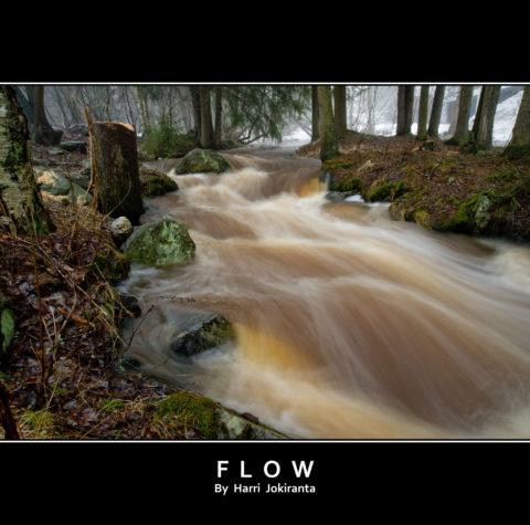 Flow / 2010