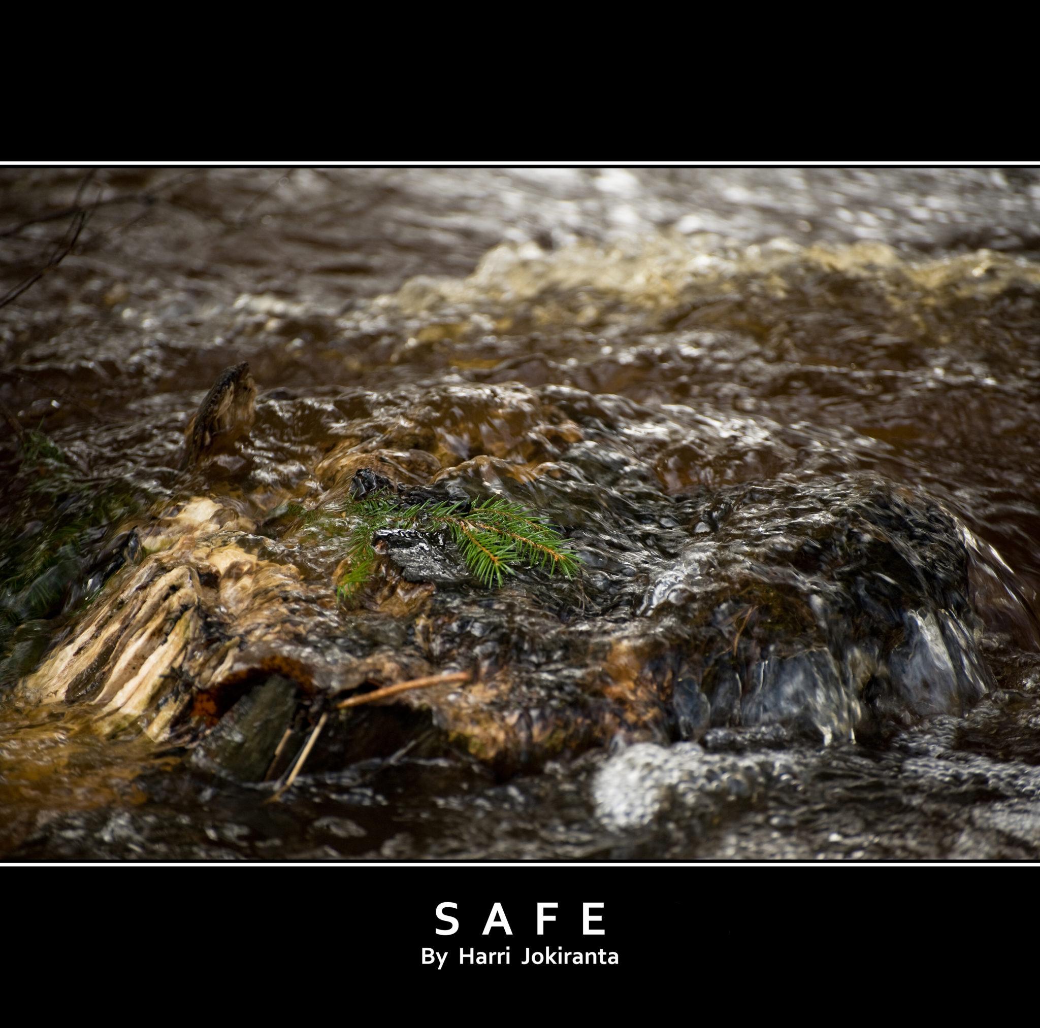 Safe / 2010