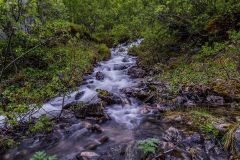 Small Stream at Artic Hill – Tunturipuro