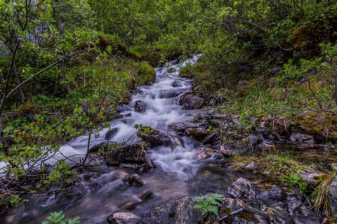 Samll Stream at Artic Hill – Tunturipuro