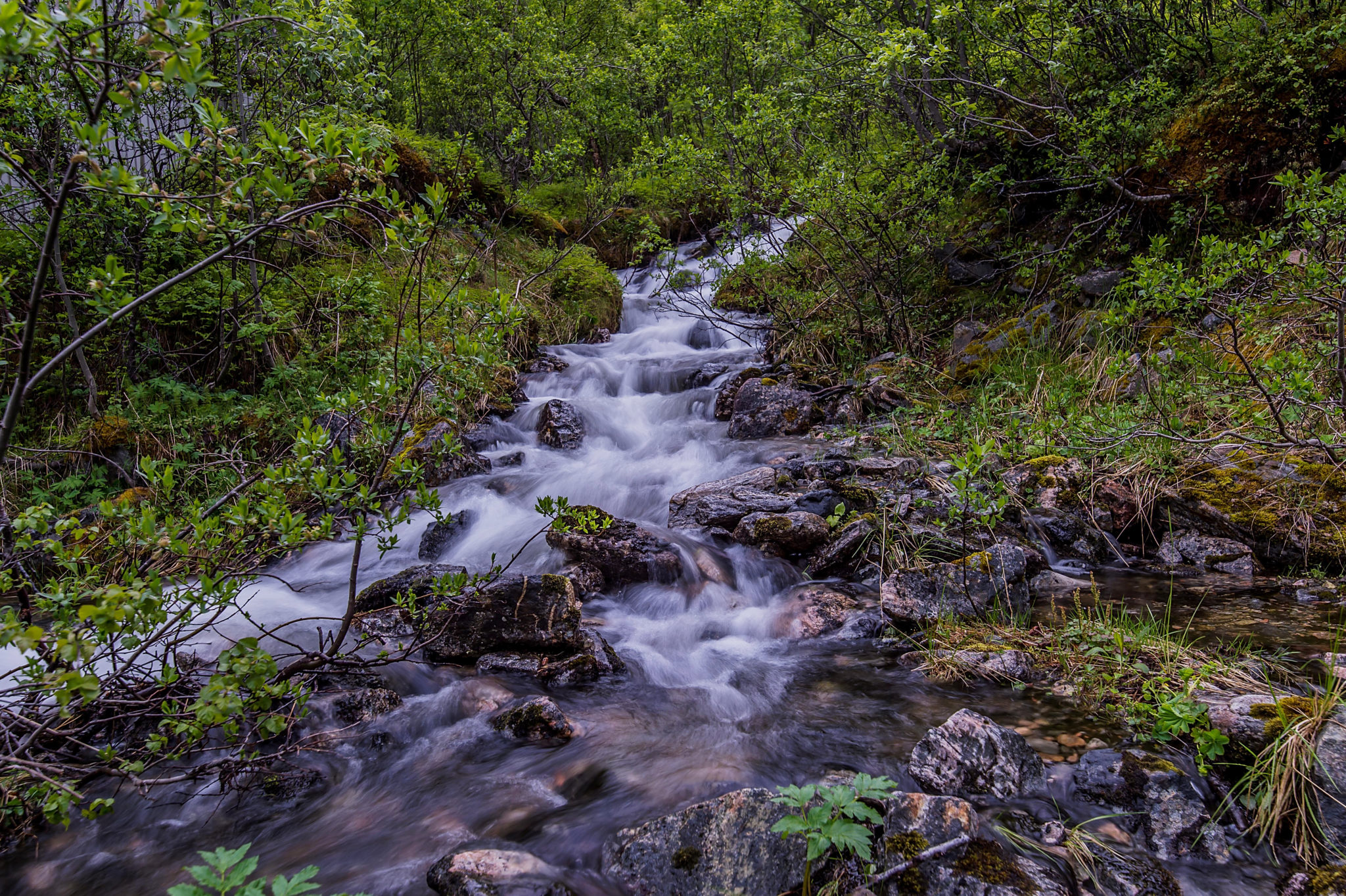 Small Stream at Artic Hill – Tunturipuro
