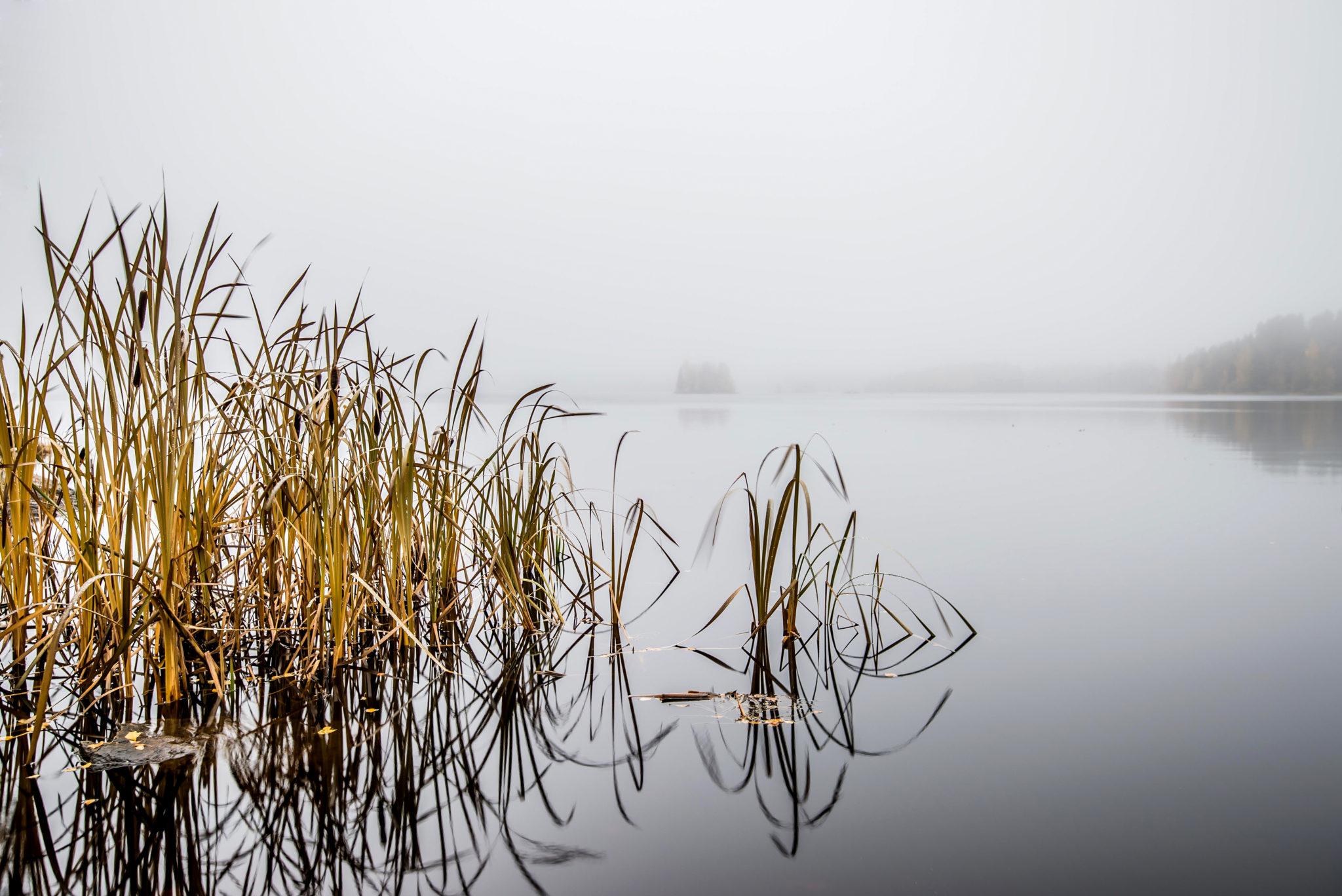 Sumuinen päivä #1 – One Foggy day #1