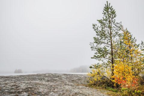 Sumuinen päivä #3 – One Foggy Day #3
