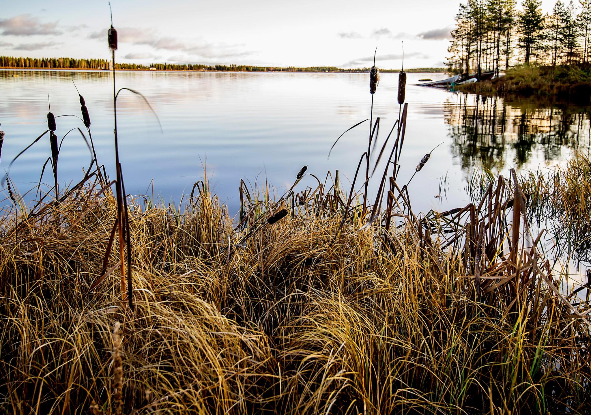 Aika koota vieheet ja veneet – Time for Autumn