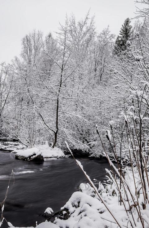 Winter, water and snow – Talvinen maisema