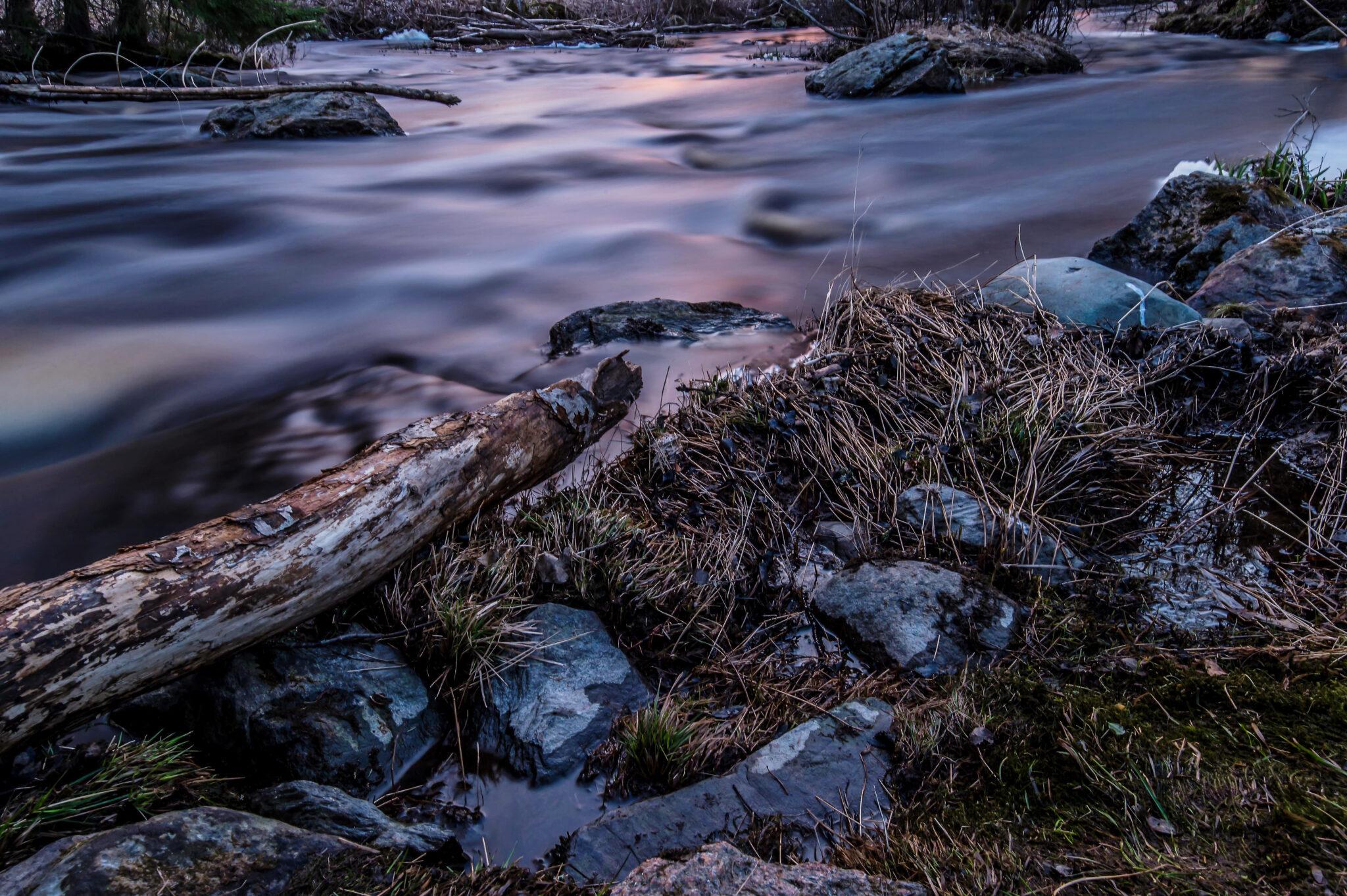 Evening at Pajuluoma Stream